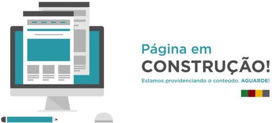 em_construcao_egov